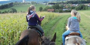 Ausritt Richtung Stubenberg